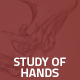 Hover Thumbnail for Study of Hands