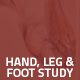 Hover Thumbnail for Hand, Leg & Foot Study